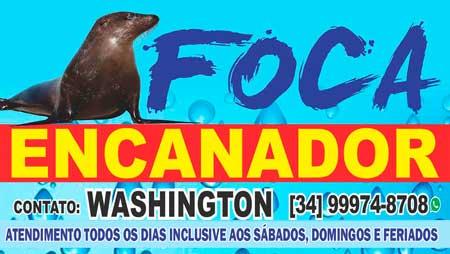 FOCA ENCANADOR